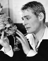 peter-otoole-as-hamlet-1363387594_b.png